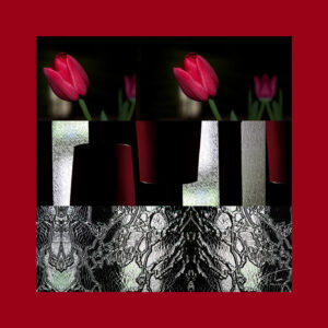 organic silk square scarf-red-tulips-70