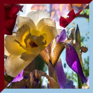 titahellas, ΖΩΗ Χειροποίητο Μεταξωτό πολύχρωμο Twill Μαντήλι 70x70εκ. με δυπλό σχέδιο